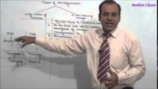 Accounting - Amalgamation
