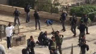 Police attacked in Israel
