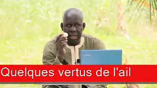 Sen wer gi yaram 445: Quelques vertus de lail YouTube Videos