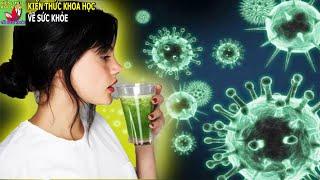 10 Thức uống tăng sức đề kháng cho hệ miễn dịch