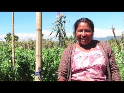 Travel Deeper - Guatemala