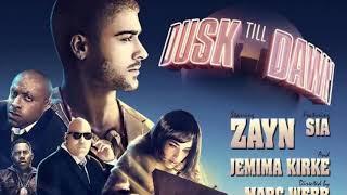 ZAYN - Dusk Till Dawn ft. Sia (Cover by Lemeshkin Kirill / Symphonic version )