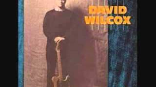 Watch David Wilcox Too Cool video