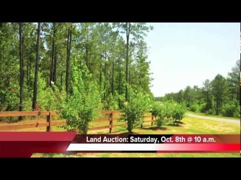 Waterfront property sale in Georgia Land Auction