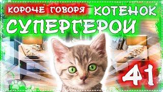 КОРОЧЕ ГОВОРЯ, КОТЕНОК СУПЕР ГЕРОЙ 41 / расплата бандитов / бездомный котенок Лайки
