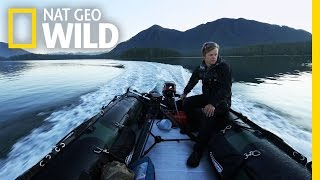 How Vancouver Island Inspired a Wildlife Photographer | wild_life with bertie gregory: Q&A