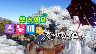 스누피의 천애명월도 방파대전/소아온 리코리스 방송 [0…