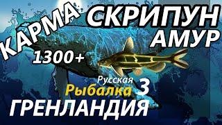 Скрипун Амур карма/ РР3 [Русская Рыбалка 3 Гренландия].