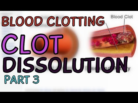 Blood Clotting 3/3 - Kallikrein - Clot Dissolution - Anticoagulants - Heparin