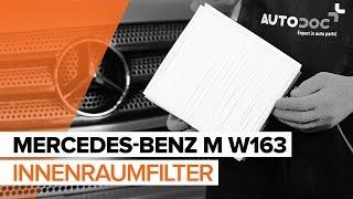 Montage MERCEDES-BENZ M-CLASS (W163) Glühlampe Kennzeichenbeleuchtung: kostenloses Video