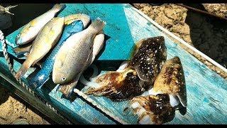 How We Get Super Fresh Fish On Bantayan Island - Fresh Fish At Our Door