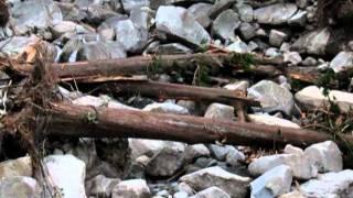 平成23年台風12号被害後の那智の滝2