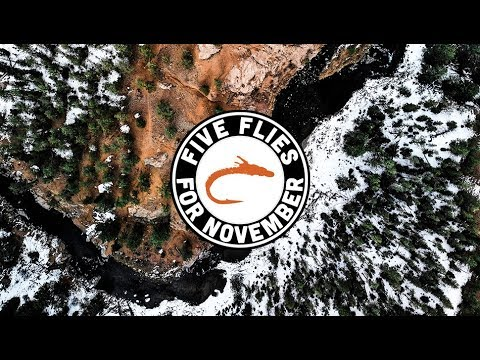 "Video Hatch: ""Five Flies for November 2019"""