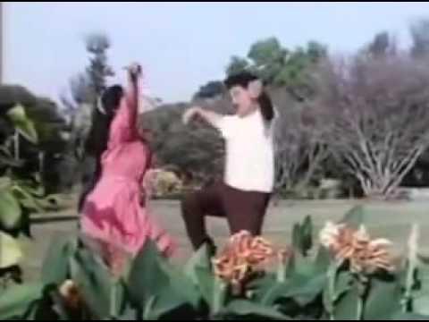 Zapatela marathi movie song