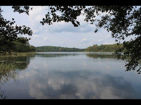Продажа земли сельхозназначения на берегу озера в Псковской области