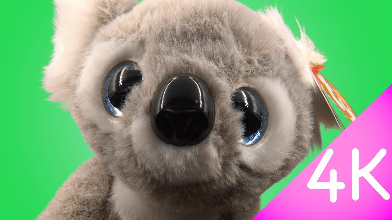 adad3a2dde4 Ty Beanie Babies - Kookoo 4k - YouTube