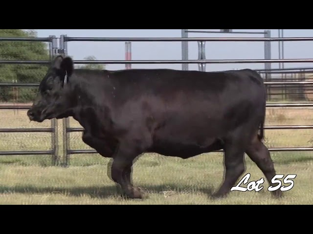 Pollard Farms Lot 55