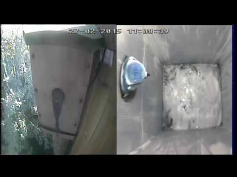 Blue Tit Nest Box DIY