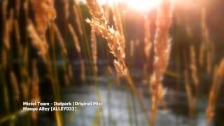 Mistol Team - Italpark (Original Mix)[ALLEY033]