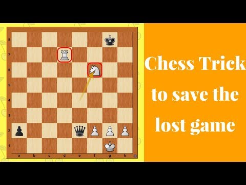 Chess Trick to save the lost game : drawing Mechanism with Rook + Knight