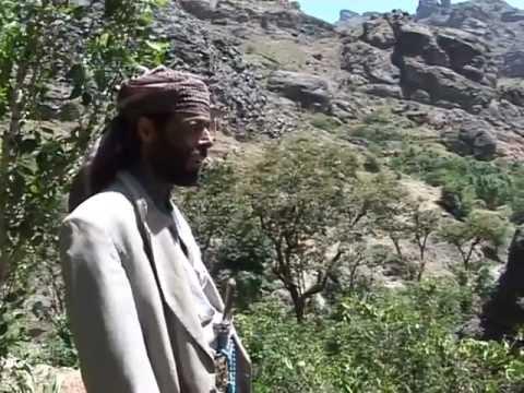 Yemen's Qat Economy