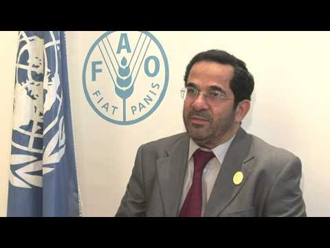 FAO Director-General meets the Arab Authority for Agricultural Investment and Development