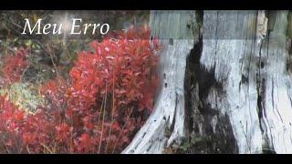 POEMA MEU ERRO | Poesia com canção Theme from Romeo and Juliet | André Rieu