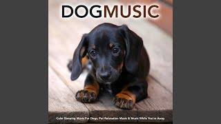 Soothing Sleeping Music For Dogs