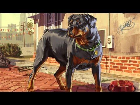 Gta  How To Get A Dog Gta  Dog Parody
