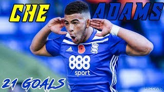 CHE ADAMS | The Best Striker In England In 2019 | Every Goal This Season | HD