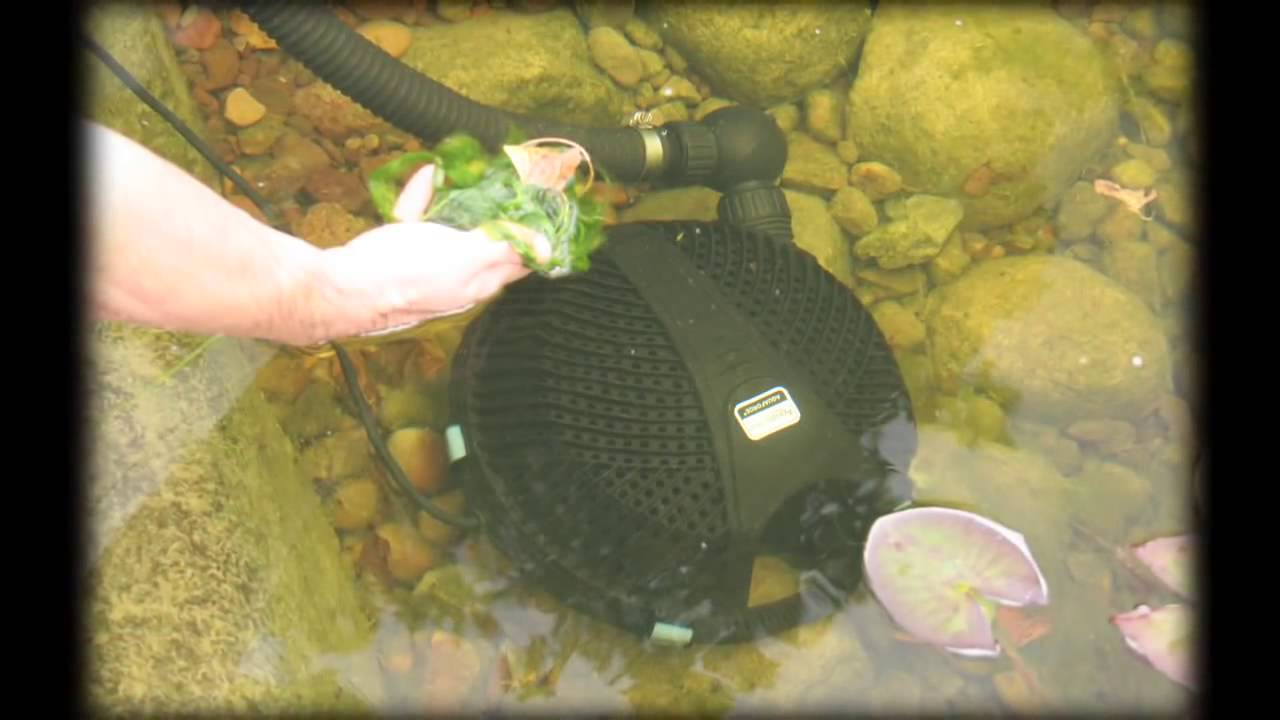 Aquascape's AquaForce® Pump Maintenance & Troubleshooting ...