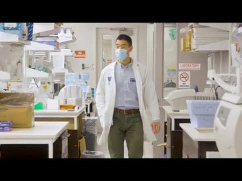 PhD in Biomedical Sciences with a focus in Immunology