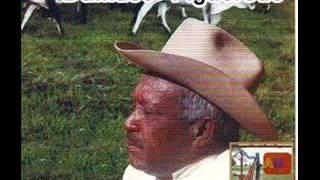 Damaso Figueredo - El Llanero Positivo