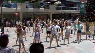 YBWA Flash Mob - Murray St Mall(, 2012-12-02T11:57:52.000Z)