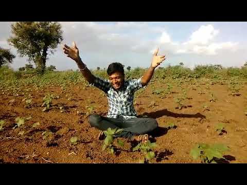 Shindi bk farmer funny