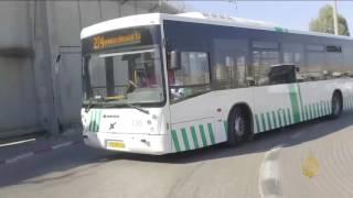 هذا الصباح-مقدسية.. أول سائقة لحافلة ركاب