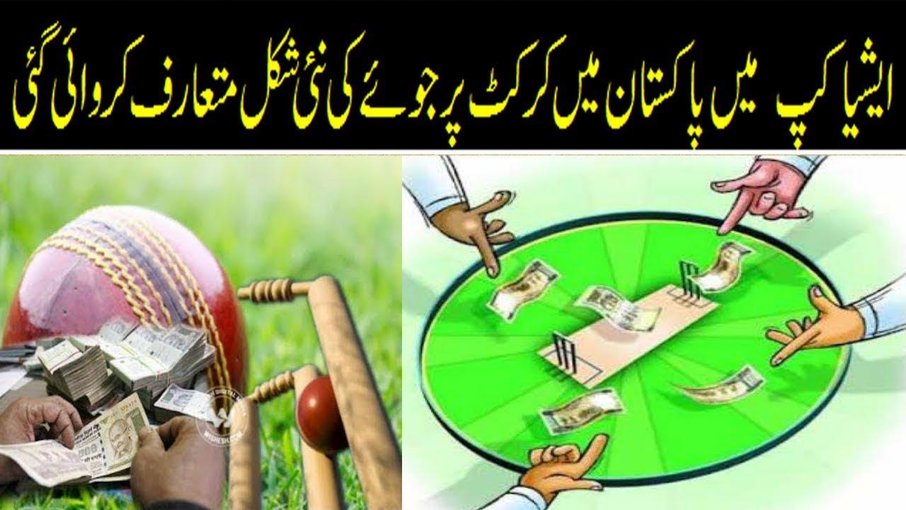 Online betting cricket tips in urdu winner betting ct
