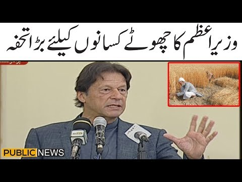 PM Imran's gift to small farmers   Speech today at ceremony for rapid agricultural loans to farmers