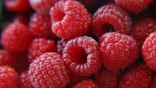 Raspberry Habanero Jam From Tdot Heat!