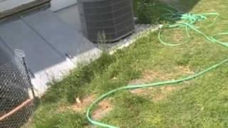 broken hose