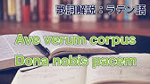 ソウル ラテン語 ダーク