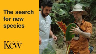 The search for new species