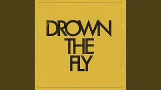 Play Drown the Fly