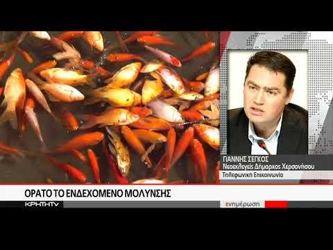 Προβληματισμός γιά τα νεκρά ψάρια στό φράγμα Αποσελέμη