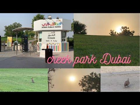 Creek park Dubai  | inside creek park | Dubai creek park 2021 | best park in uae | vlog by aim life