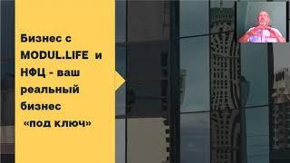 Обучение стратегии заработка в проекте Modul.life