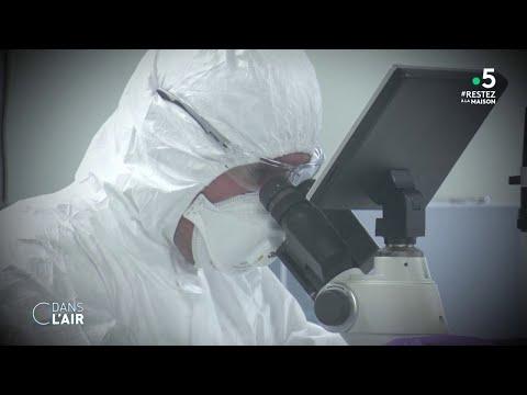 Coronavirus: la course au vaccin s'accélère - Reportage #cdanslair 19.03.2020