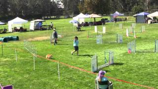 Leslie And Wickett Exc. Jumpers 9/18/2010