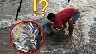 #ปลาขึ้นให้รีบจับมากันแบบนี้เรียงคิวกันจับตามลำดับได้เลย!?