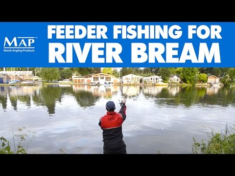 Feeder Fishing For River Bream